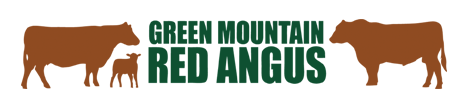 Green Mountain Red Angus